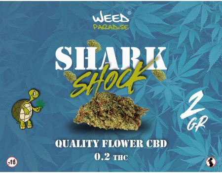 Shark Shook Indoor | 3 à 10% CBD THC - de 0.2%