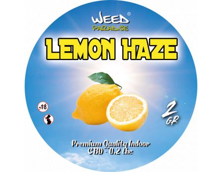 Lemon Haze | Indoor  3 à 10% CBD THC - de 0.2%